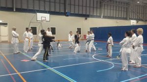 Board Breaking - Ellenbrook Adult Martial Arts Classes