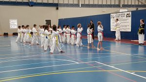 Junior Taekwondo - Ellenbrook Kids Martial Arts Classes